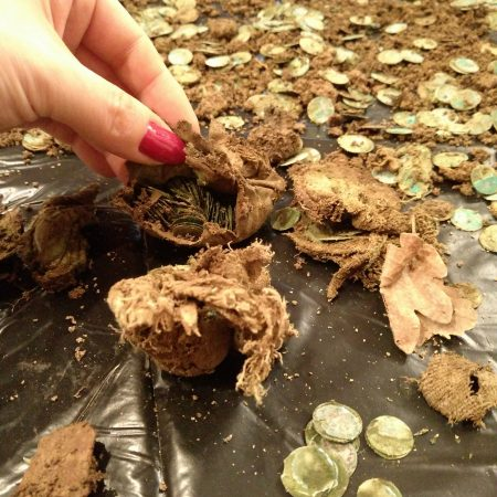6500 ottoman coins found with a Detech Relic Striker metal detector